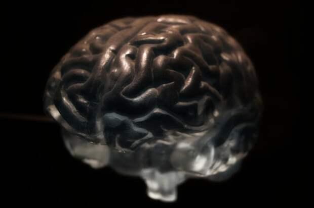 Эксперт по питанию Медведева перечислила три продукта, убивающие мозг человека