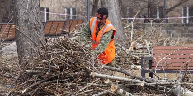 Спиленные ветки вывезли из двора на Волжском бульваре