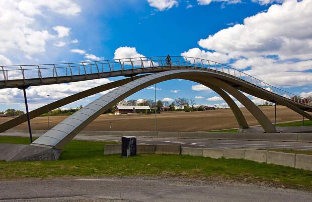 Мост Леонардо да Винчи