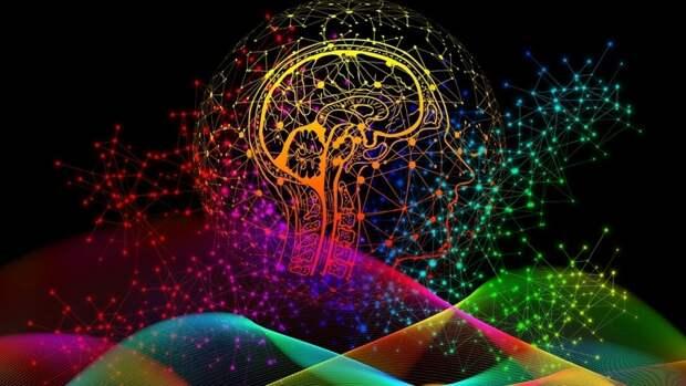 Смена образа жизни может замедлить старение мозга
