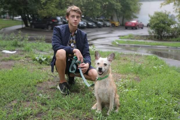 Иван не смог пройти мимо потеряшки и привел собаку домой / Фото: Артур Новосильцев