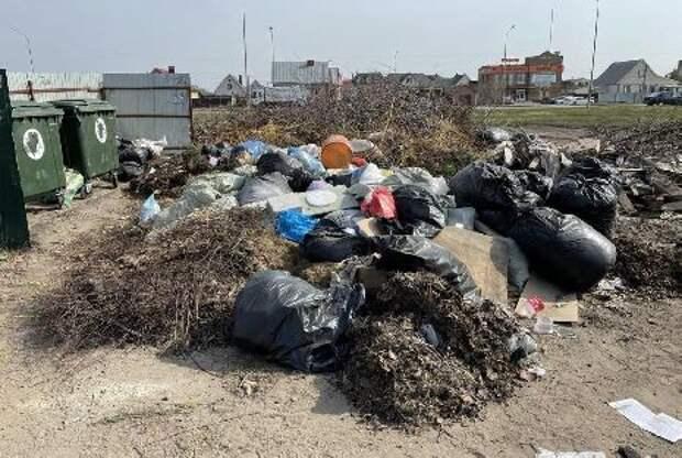 Северная часть Тамбова утопает в мусоре