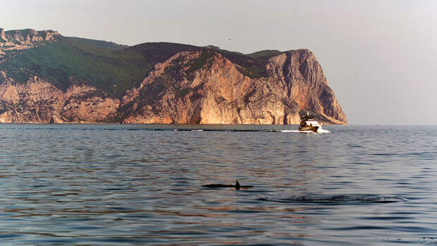 Британский военный корабль вошел в Черное море