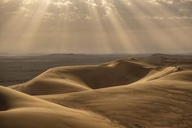 Слишком жарко, чтобы жить: к чему приводит всемирный зной