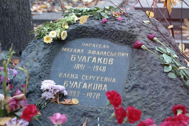 Коллекция рецензий, коты и Гоголь: факты о Михаиле Булгакове