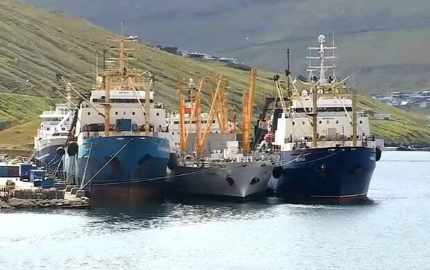 Обвинение в убийстве: Япония начала арестовывать членов экипажа российского судна