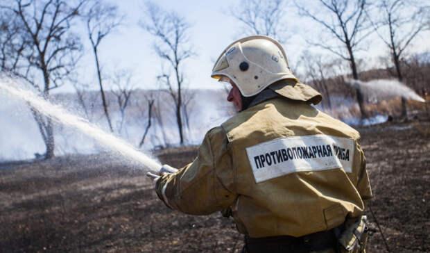 В Хабаровском крае потушены все лесные пожары