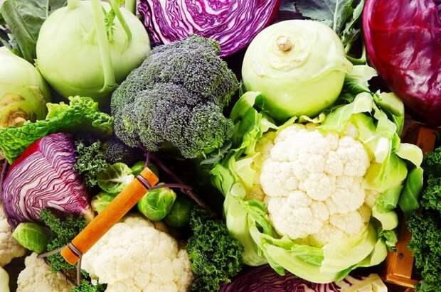 Готовим кольраби, брокколи и другую полезную и необычную капусту