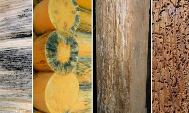 Когда нужны защитные пропитки для древесины