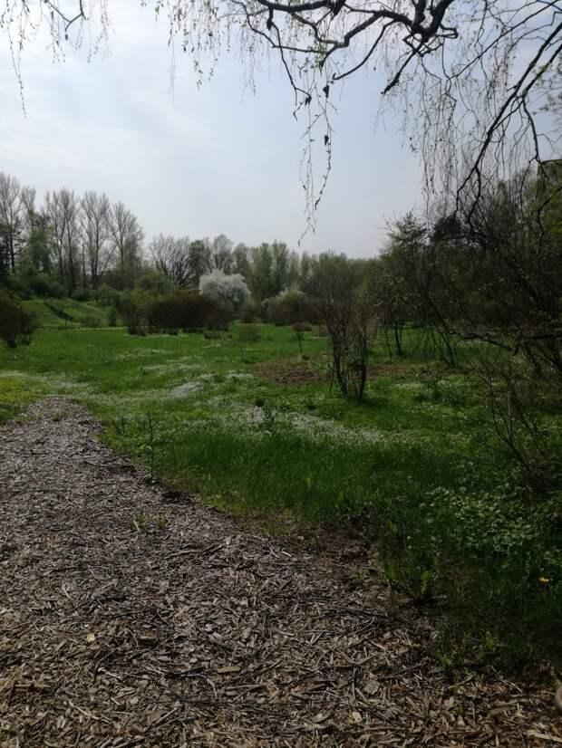 Ботанический сад весной