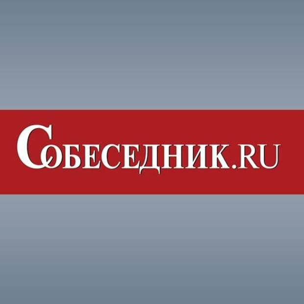 Захарова: РФ не вмешивалась и не будет вмешиваться в электоральные процессы США