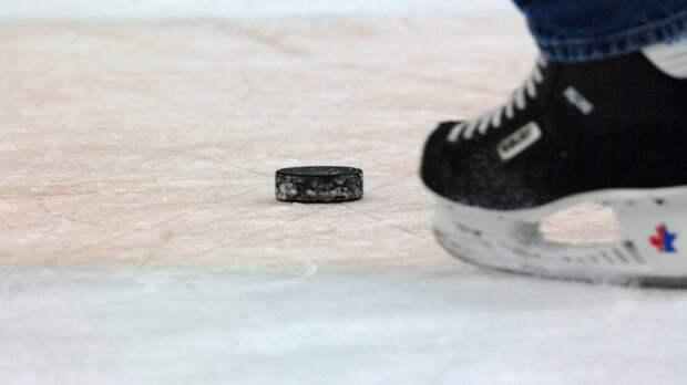 Звезды мирового хоккея могут принять участие в матче на льду Невы