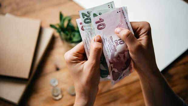 Эксперт предсказал обвал турецкой лиры и индийской рупии