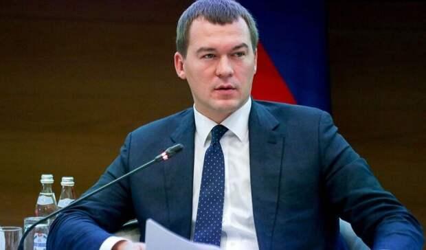 Дегтярёв: правительство Хабаровского края решит проблему дачных направлений