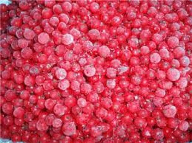 Красная смородина - рецепты заготовок на зиму и вкусные десерты