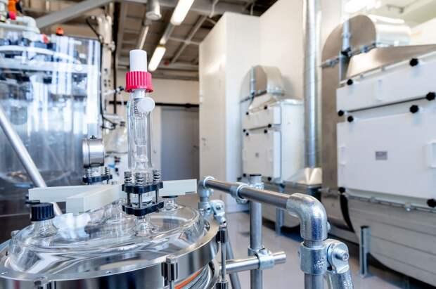 Grindex инвестировал 800 тысяч евро в создание мультифункционального участка