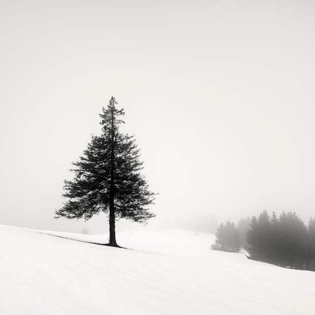 Cherno-belye-peyzazhnye-fotografii-Pera-Pellegrini 20
