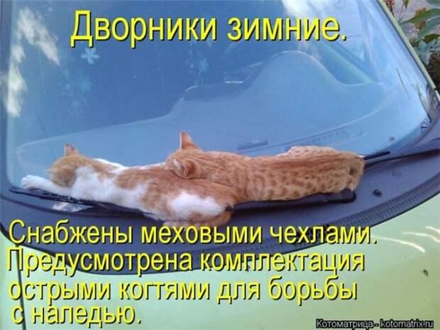 http://s05.radikal.ru/i178/1301/c1/3c2c674f4a75.jpg