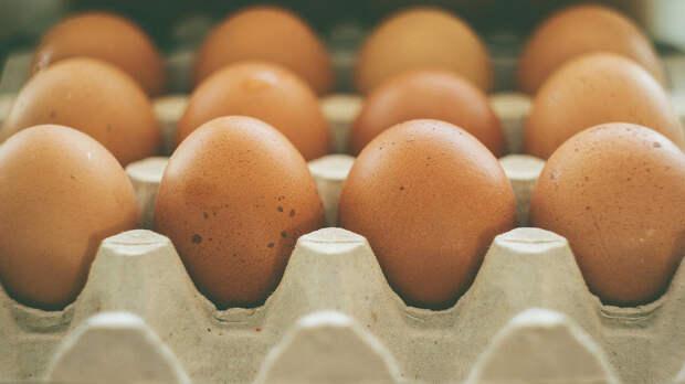 Назван самый вредный для здоровья способ приготовления яиц