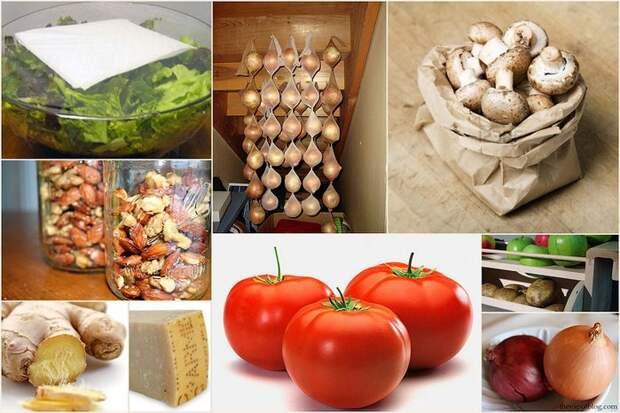 Храним продукты правильно