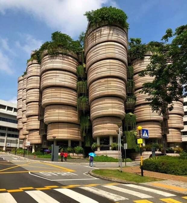 Фантастические кадры из Сингапура, которые доказывают, что будущее там уже наступило