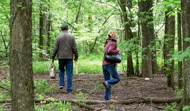 Жителям Удмуртии запретили посещать лес