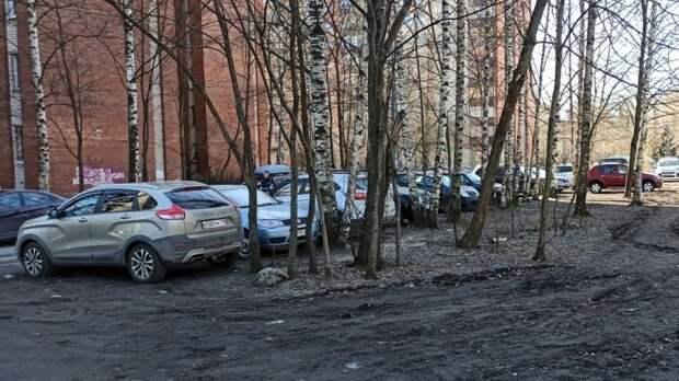 Петербуржцы смогут пожаловаться на неправильную парковку во дворах