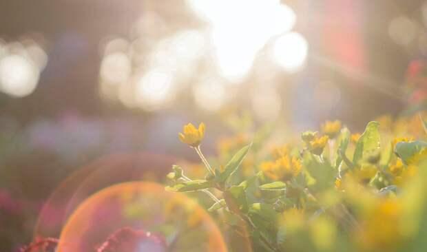Тепло в Крым придет не раньше апреля