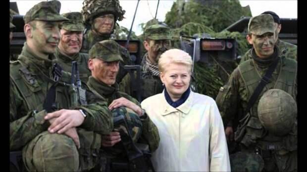 Как литовское правительство учит граждан воевать?