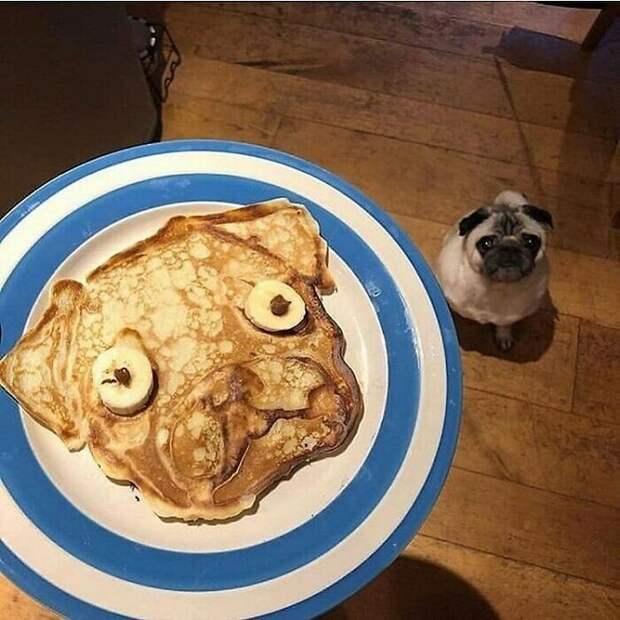 40 смешных истранных снимков про еду