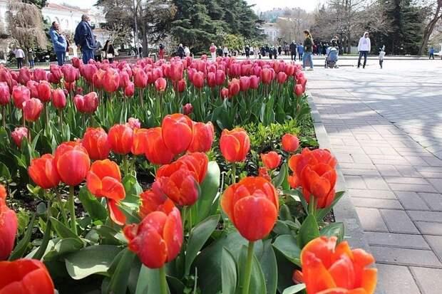 Погода в Крыму на 19 апреля: дожди и тепло до +18