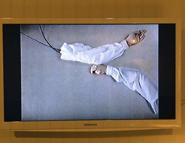 Видеоинсталляция с дёргающимися отрезанными руками Фото: Эдвард ЧЕСНОКОВ