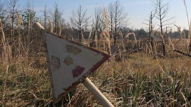 Ученые заявили о новых опасных реакциях в Чернобыльской АЭС