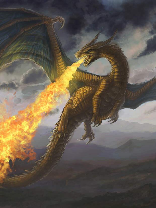Что наука говорит о летающих и огнедышащих драконах