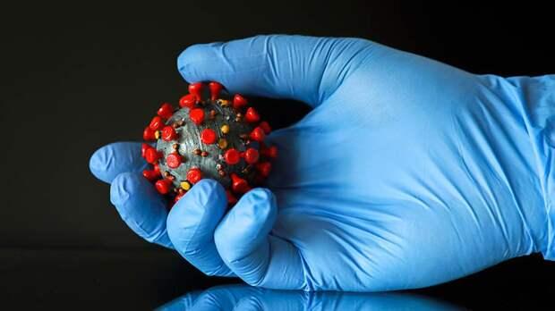 Новый алгоритм позволит определять вспышки коронавируса с помощью канализации