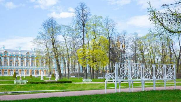 Музеи Петергофа, Царского Села и Павловска стали самыми посещаемыми в России на майских