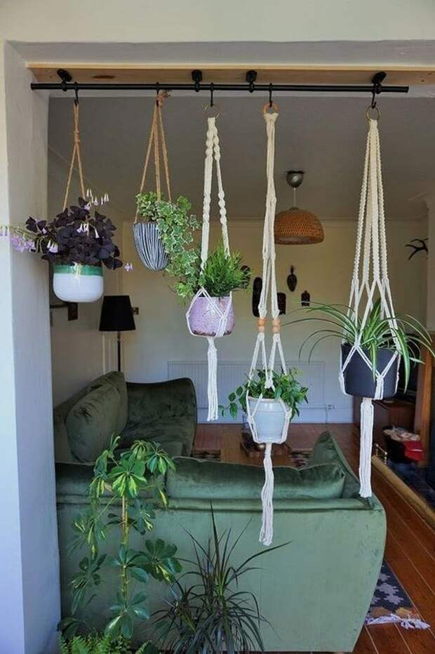 Пространство под цветы в квартире: оригинальные идеи, достойные внимания