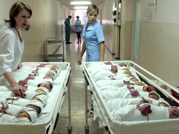 Акушер-гинеколог Виктор Радзинский: «Наши роддома используются как казармы»