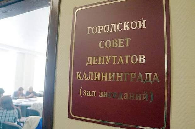 Назван самый богатый депутат городского Совета Калининграда