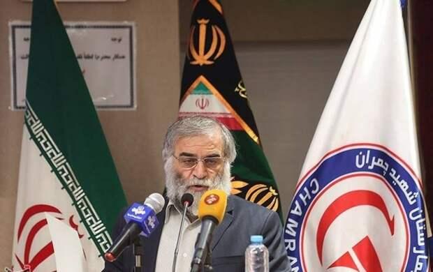 ООН призвала Иран смириться с ликвидацией ученого-ядерщика