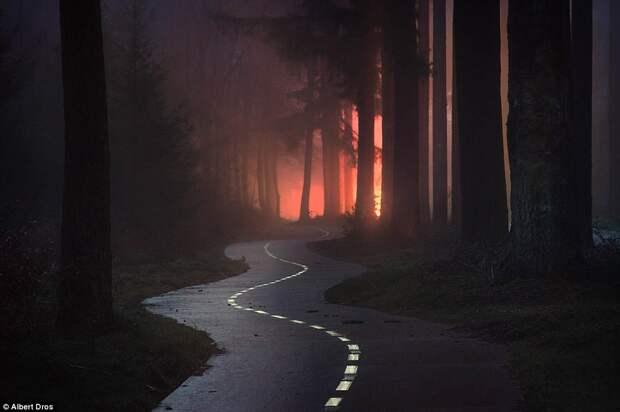 Извивающаяся дорога