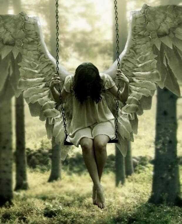 angel (4)