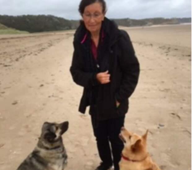 Песик пролетел 2000 км, чтобы стать другом для одинокой 69-летней женщины