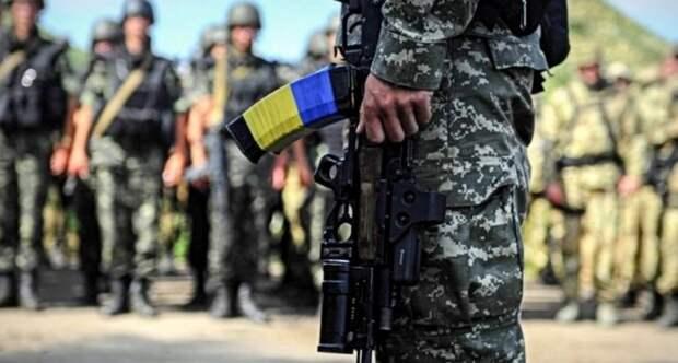 Донбасс: на передовую переброшены спецгруппы с иностранным оружием (ФОТО, ВИДЕО)