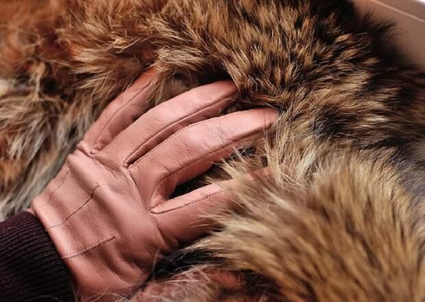 Натуральный мех нельзя будет использовать для пошива одежды в Израиле