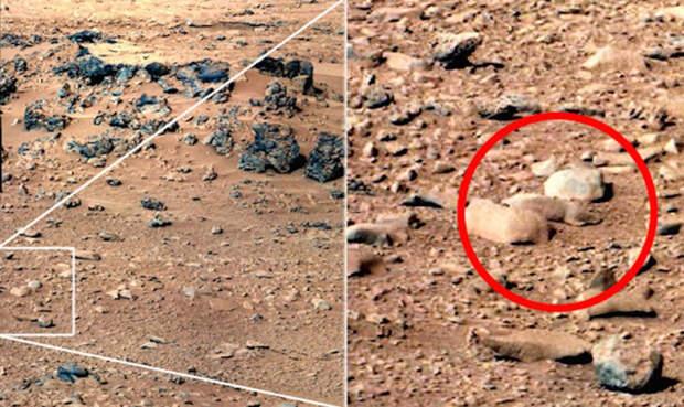 Крысы в космосе Еще один всплеск интереса к фотографиям с Марса возник в 2003 году. Curiosity передал серию снимков, на одном из которых энтузиасты заметили крысу. Надо ли говорить, что при ближайшем рассмотрении, крыса оказалась обычным камнем.