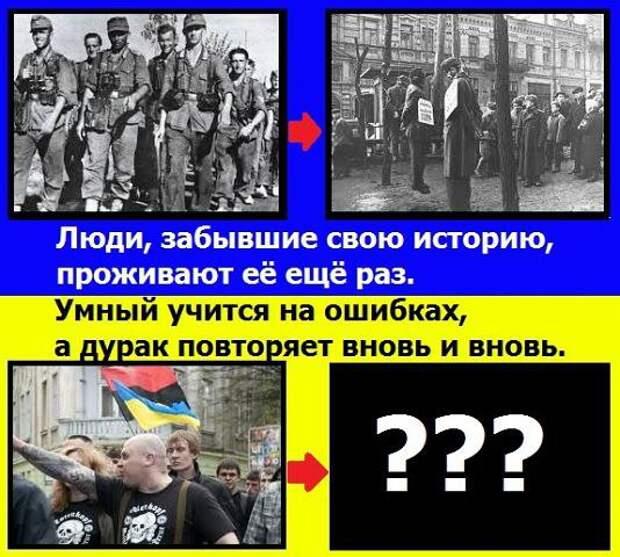 Новости стационара: Украинский посол свалил на ФРГ всю ответственность за «освобождение» Крыма