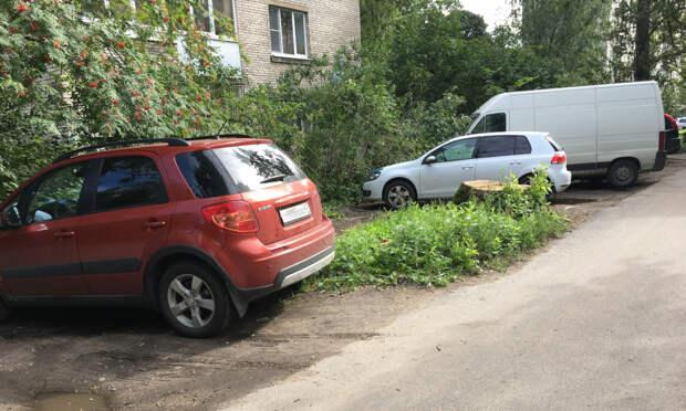 Смольный уточнил понятие «газон». Желающие пожаловаться на парковку во дворах и без этого дважды обвалили сайт ГАТИ