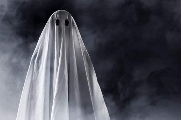 Петрозаводчанин в самодельном костюме привидения обокрал продуктовый магазин