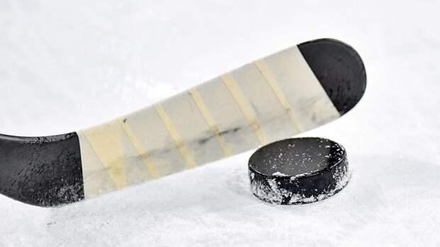 В Латвии призвали задержатьхоккейную команду Белоруссии